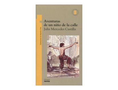 aventuras-de-un-nino-de-la-calle-2-9789580409458