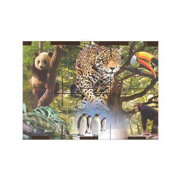 libro-cubo-1-9788575304518