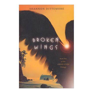 broken-wings-2-9781401686376