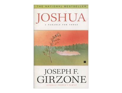 joshua-a-parable-for-today-8-9780684813462