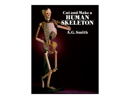 cut-and-make-a-human-skeleton-8-9780486261249