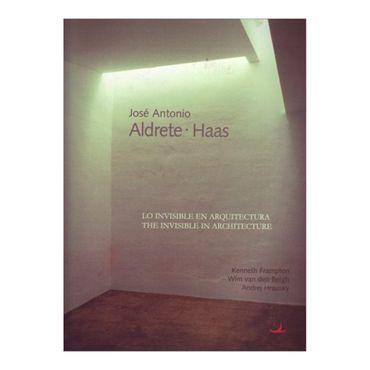 jose-antonio-aldrete-hass-lo-invisible-en-arquitectura-the-invisible-in-architecture-2-469981