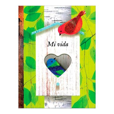 mi-vida-2-9781472320438