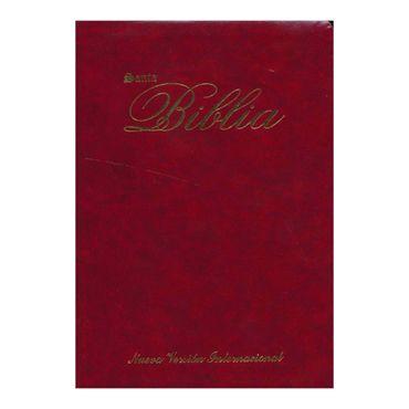 santa-biblia-nvi-vinotinto-9781563209086