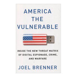 america-the-vulnerable-9781594203138