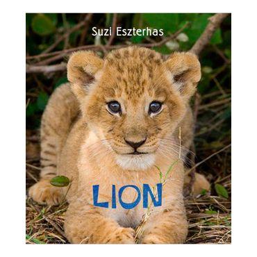 lion-4-9781847803115
