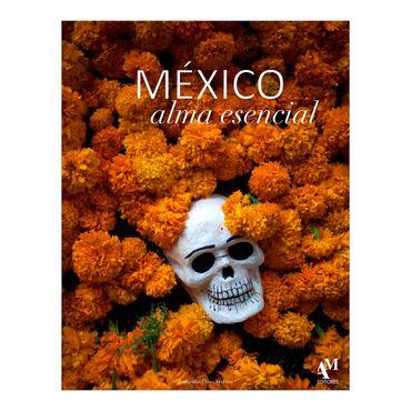 mexico-alma-esencial-1-9786074372793