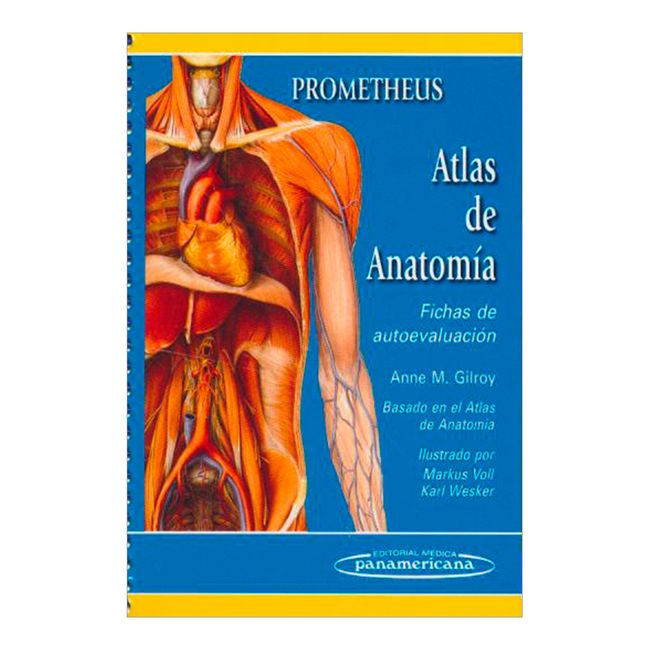 Prometheus. Atlas de anatomía. Fichas de autoevaluación - Panamericana