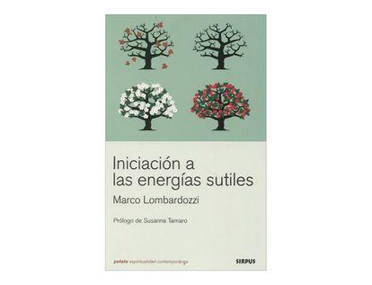 iniciacion-a-las-energias-sutiles-3-9788489902879