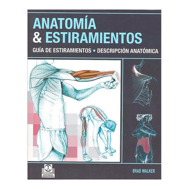 Anatomía & estiramientos - Panamericana