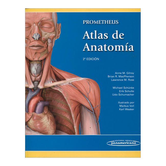 Prometheus. Atlas de anatomía. 2ª Edición - Panamericana