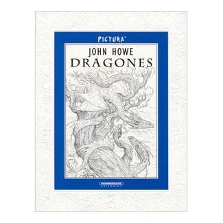 pictura-dragones-2-9789583051722