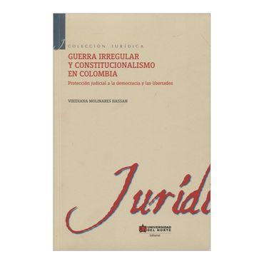 guerra-irregular-y-constitucionalismo-en-colombia-2-9789587415100