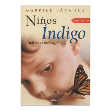 ninos-indigo-2-9789871102020