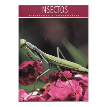 insectos-miniaturas-sorprendentes-2-9789875228443