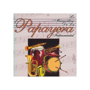 lo-maravilloso-de-la-papayera--2--7707264897133