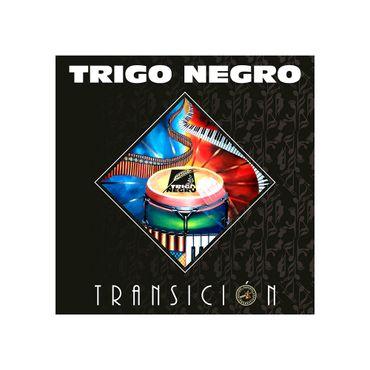 transicion--2--7707318077276