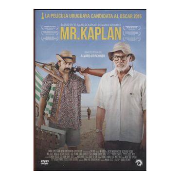 mr-kaplan-7506036059324