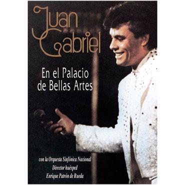 juan-gabriel-en-el-palacio-de-bellas-artes-743219835390