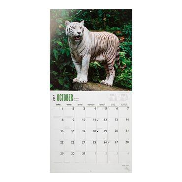 calendario-white-tigers-2017-square-2-9781465055361