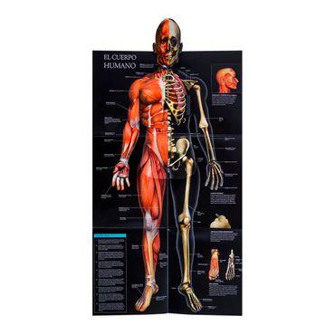 el-cuerpo-humano-guia-animada-en-3d--2--9786074045710