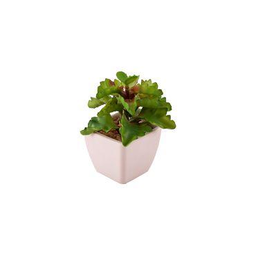 planta-artificial-con-hojas-concavas-13-cm-1-7700000833440