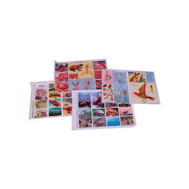 laminas-educativas-sobre-animales-aves-reptiles-anfibios-y-mamiferos-1-7707265504726