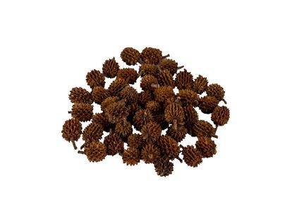 arbol-de-pino-sepia-para-maqueta-escala-1200-1-7709990346848