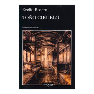 tono-ciruelo-2-9789584257598