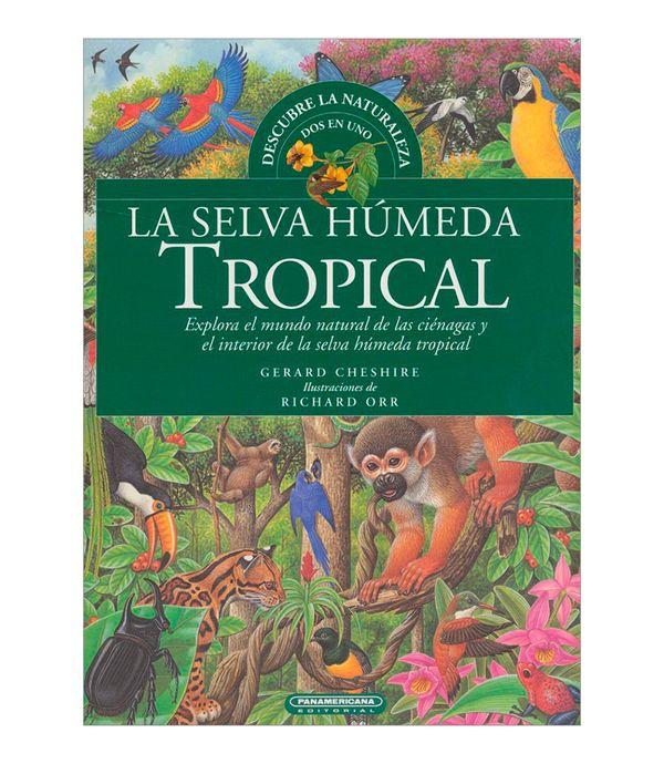 La Selva Húmeda Tropical Panamericana New