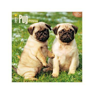calendario-pug-puppies-2016-2-9781465041876