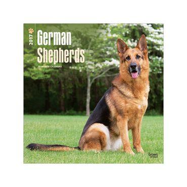 calendario-german-shepherds-2017-square-2-9781465055781