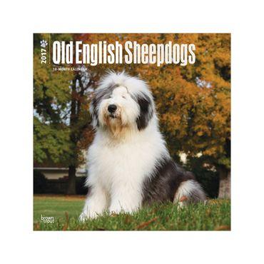 calendario-old-english-sheepdogs-2017-square-2-9781465081926