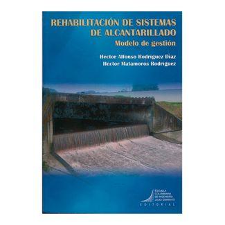 rehabilitacion-de-sistemas-de-alcantarillado-modelo-de-gestion-9789588726311