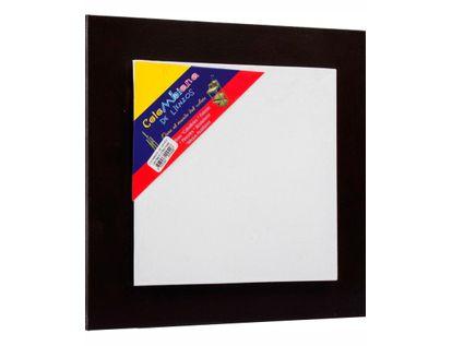 lienzo-con-bastidor-de-20-cm-x-20-cm-con-marco-flotante-1-7707047200426