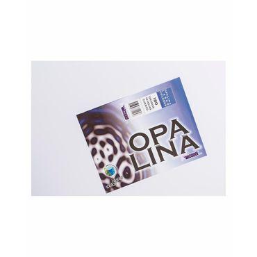 cartulina-opalina-blanca-de-1-4-x-10-uds--7706563712956
