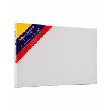lienzo-con-bastidor-de-20-cm-x-30-cm-con-grapa-posterior-7707047200211