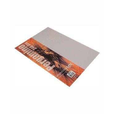 papel-pergamino-de-240-g-por-10-hojas-7707317357355