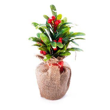 adorno-navideno-de-bonsai-con-frutos-rojos-1-7701016153089