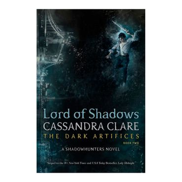 lord-of-shadows-9781481497947