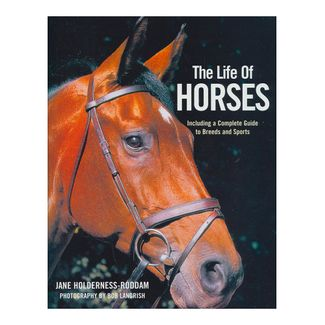 the-life-of-horses-9780753715970