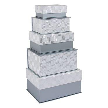 set-de-5-cajas-rectangulares-plateadas-1-7701016263412