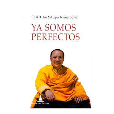 ya-somos-perfectos-9788494532740