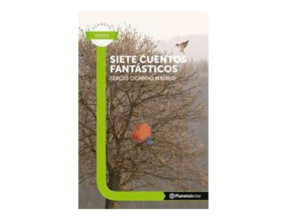 siete-cuentos-fantasticos-9789584262387