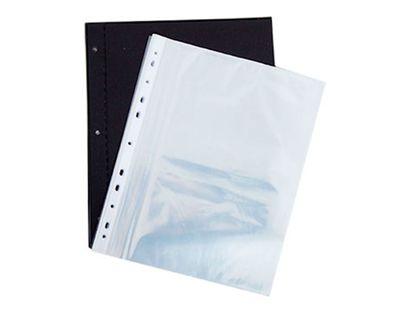 pasta-separable-tamano-carta-25-protectores-en-vinilo-633