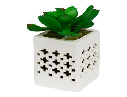 planta-artificial-carnosa-en-base-cuadrada-7701016312684
