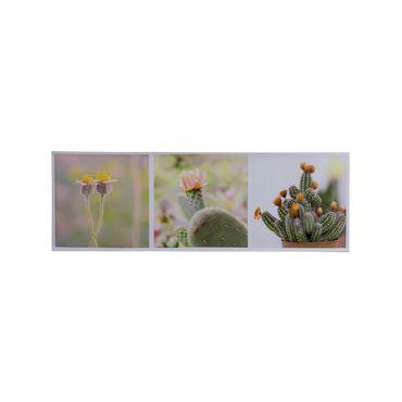 cuadro-decorativo-canvas-x-3-cactus-7701016299473