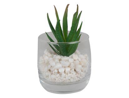planta-artificial-carnosa-en-base-de-vidrio-7701016312769