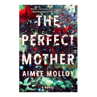 the-perfect-mother-9780062845030
