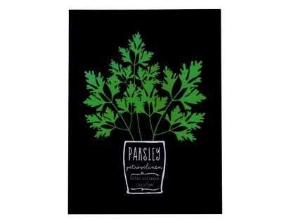 cuadro-decorativo-estampado-parsley-30-x-40-cm-7701016442169
